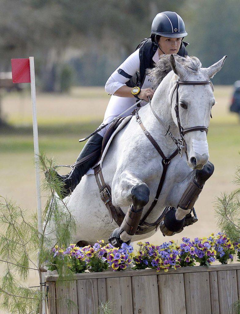 rockinghorse-3